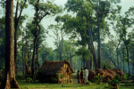 ಪ್ರಜಾ ಸಮರ – 18 (ನಕ್ಸಲ್ ಕಥನ)