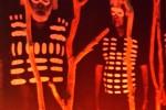 ಕದ್ದ ತಲೆಮಾರುಗಳನ್ನು ಹುಡುಕುತ್ತಾ… : ಆಸ್ಟ್ರೇಲಿಯಾ… ಆಸ್ಟ್ರೇಲಿಯಾ! (ಭಾಗ-2)